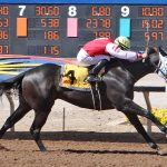 Shame On Read - Copper Top Futurity - 2019